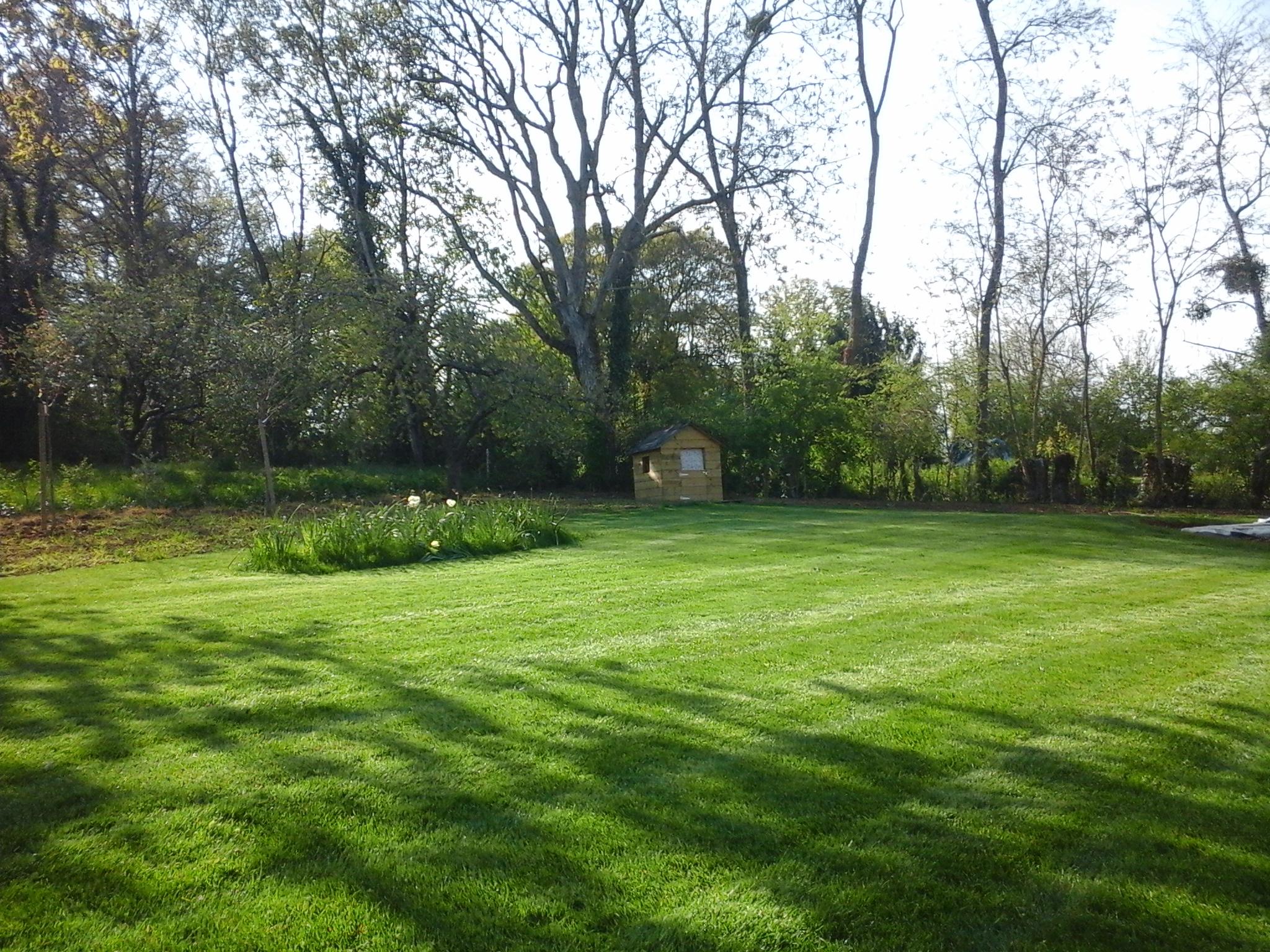 Entretien tonte gazon pelouse jardin bois services jean for Gazon tonte
